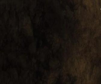Les as de la jungle à la rescousse - S3 : La dernière grotte sur la gauche